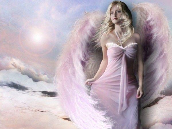 dans fond ecran ange rose 14b50299