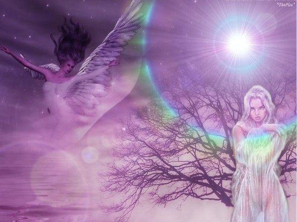 dans fond ecran ange violet 153d8708
