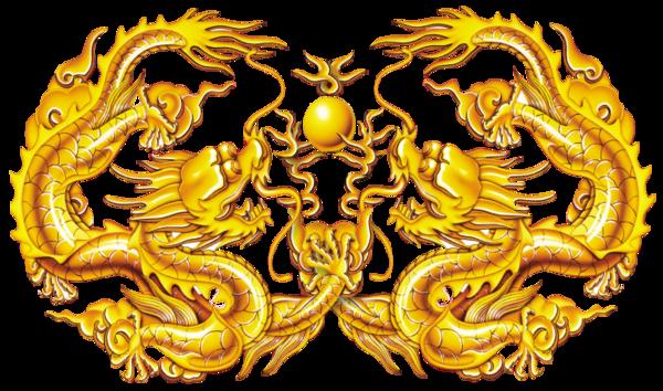 Les dragons  - Page 3 43f5ba82