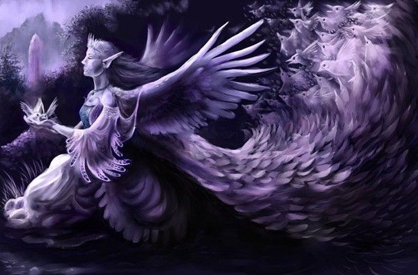 dans fond ecran ange violet 7969b7a4