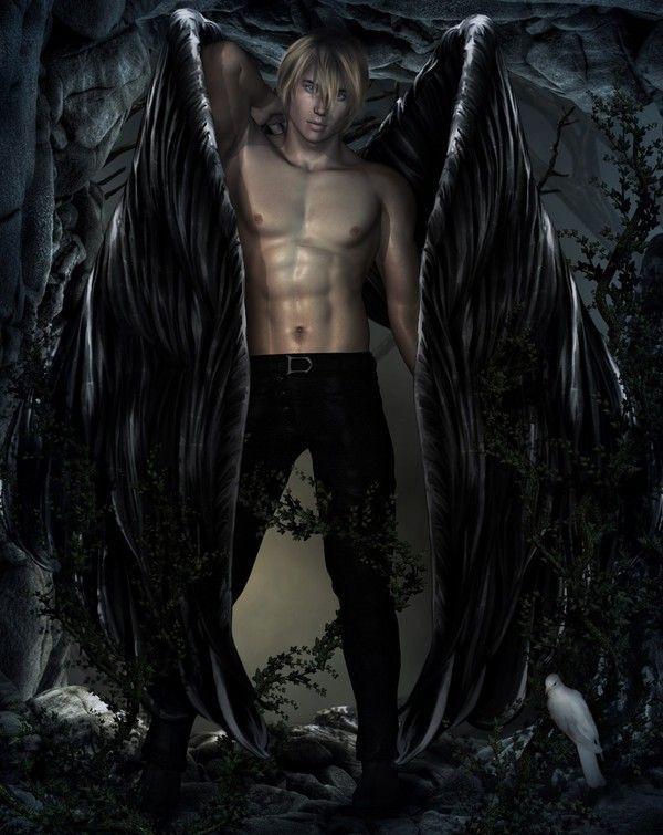 dans fond ecran ange noir b49505e9