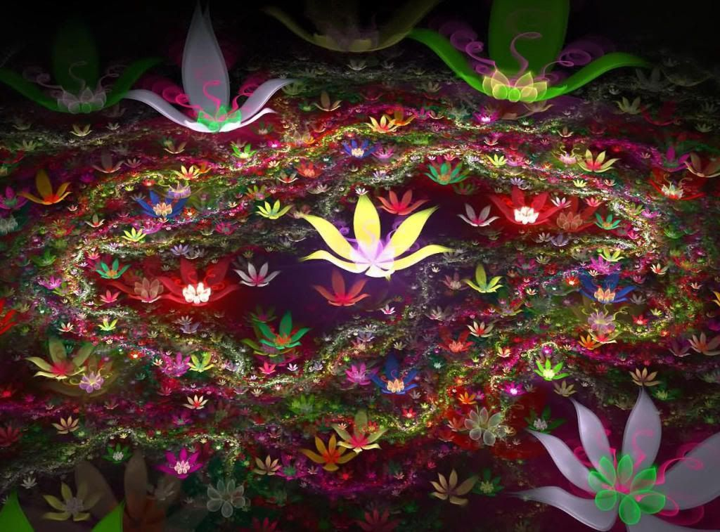 Fleurs speciales page 2 - Flower wallpaper 3d pic ...
